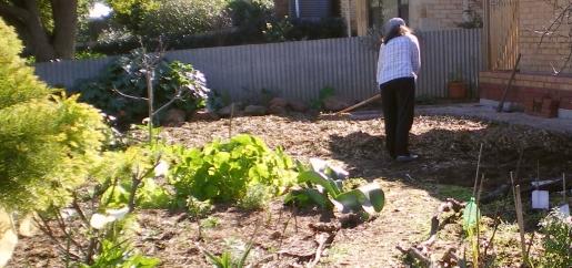 garden 6 aug 2014 030 - Copy