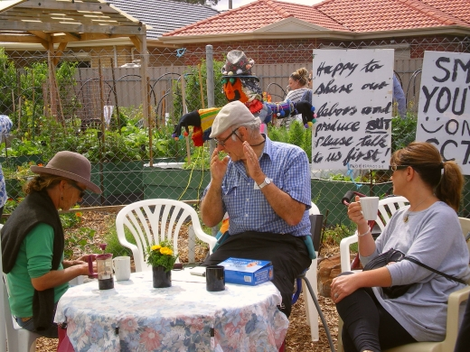 cCommunity garden open day 16 Nov '14 007